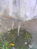 20051222tsurara1